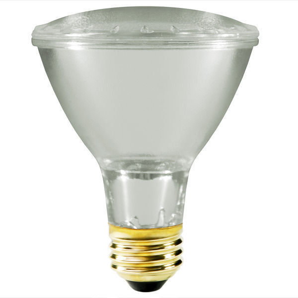 Philips EcoVantage PAR30 Spot Light Bulb - TruGolf